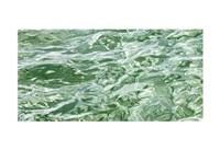 Water Series #7 Fine-Art Print