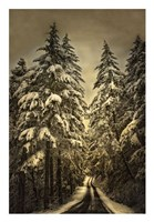 Wagner Creek Snow Fine-Art Print
