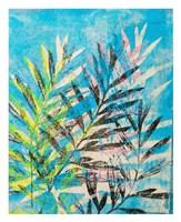 Silk Oak's Reach Fine-Art Print