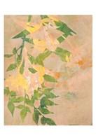 Spring Passage Fine-Art Print