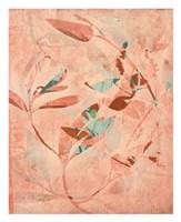 Folia Fine-Art Print