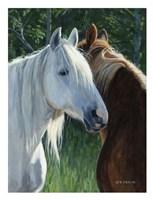Horse Whispering Fine-Art Print