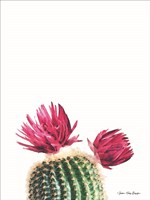 Flowered Cactus Fine-Art Print