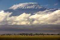 Amboseli National Park, Kenya Fine-Art Print