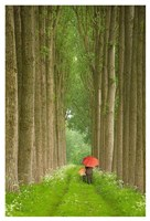 Two Umbrellas, Belgium Fine-Art Print