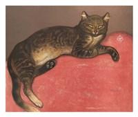 Cat on a Cushion Fine-Art Print