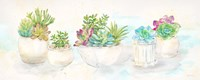 Sweet Succulents Panel Fine-Art Print