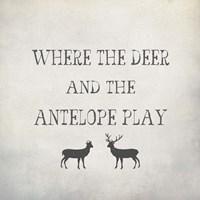 Where the Deer and Antelope Fine-Art Print