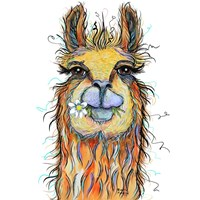 Llama with Daisy Fine-Art Print