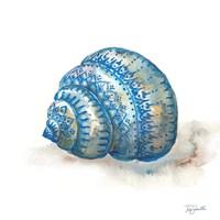 Bohemian Shells I Fine-Art Print