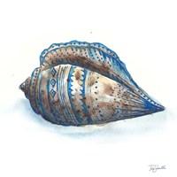Bohemian Shells II Fine-Art Print