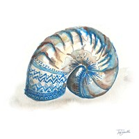 Bohemian Shells IV Fine-Art Print