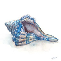Bohemian Shells V Fine-Art Print
