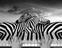 Piano Peace Fine-Art Print