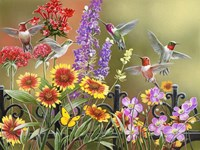 Hummingbirds - Fall Fine-Art Print