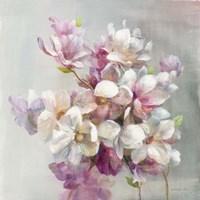 Sweet Magnolia Fine-Art Print