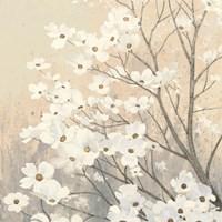 Dogwood Blossoms II Neutral Fine-Art Print
