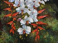 Passionate Cascade Fine-Art Print