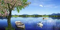 Swan Lake Fine-Art Print