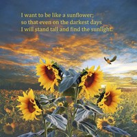 I Want to be a Sunflower Fine-Art Print
