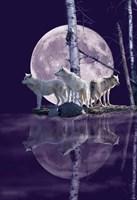 Moonset Point Fine-Art Print
