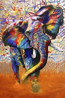 African Colours Fine-Art Print
