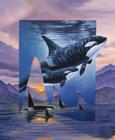 Orca Song Fine-Art Print
