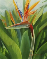 Paradise 2 Fine-Art Print
