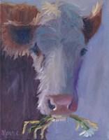 Daisy Snack Fine-Art Print