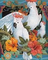 Tropical Trio Fine-Art Print