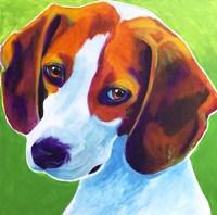 Beagle - Watson Fine-Art Print