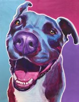 Pit Bull - Candy Fine-Art Print