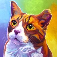 Cat - Ernie Fine-Art Print