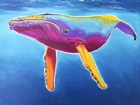 Humpback Whale - Rainbow Fine-Art Print