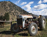 Ford Tractor Fine-Art Print