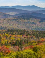 Vermont's Colors Fine-Art Print