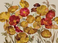 Yellow And Red Poppies Fine-Art Print