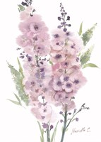 Flower Series 4 Fine-Art Print