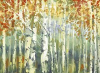 Abstract Birch Trees Warm Fine-Art Print