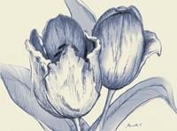Indigo Tulip Fine-Art Print
