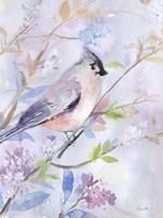 Pastel Birds 1 Fine-Art Print