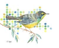 Yellow Kentucky Warbler Fine-Art Print