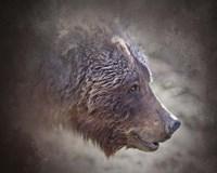 Grizzly Bear Boar Fine-Art Print
