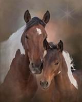 S'more & Chippewa - S Steens Mustangs Fine-Art Print
