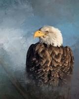 Bald Eagle Fine-Art Print