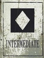 Intermediate Fine-Art Print