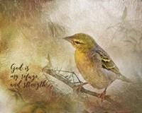 God is My Refuge Fine-Art Print