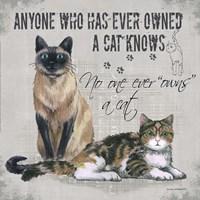 Owns a Cat Fine-Art Print