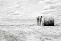 Hay Bales Fine-Art Print