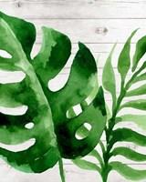 Banana Leaf III Fine-Art Print